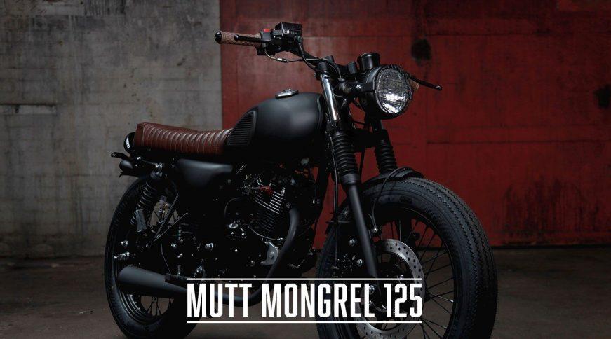 mutt mongrel 125