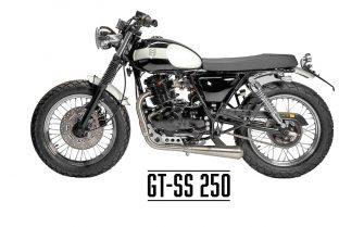 GT-SS_250_mutt